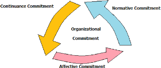 organizational commitment The model explains that commitment to an organization is a psychological state meyer, jp and allen, nj (1991) a three component conceptualization of organizational commitment, human.