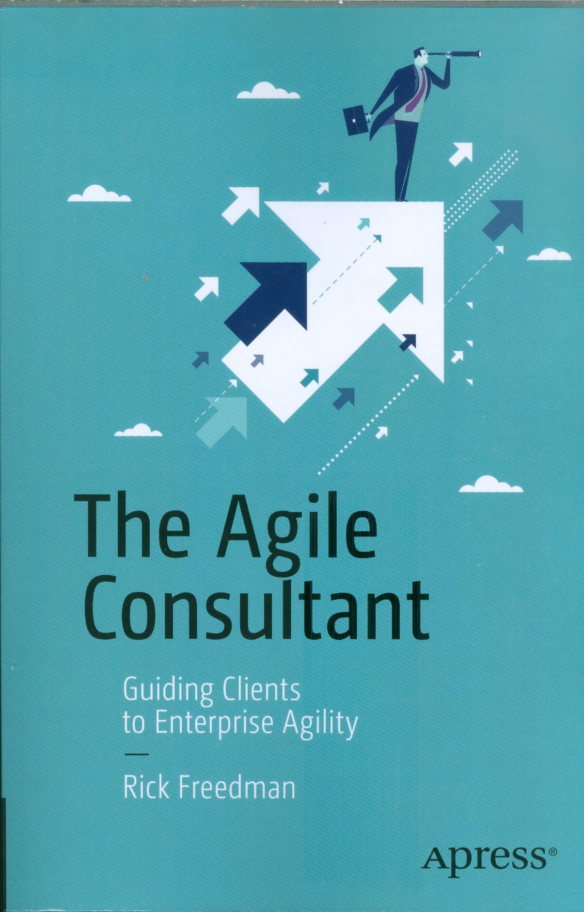 the agile consultant0001.jpg